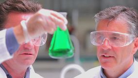 Chemists looking into the green liquid. Chemists looking into the  green liquid in beaker in the lab stock video footage