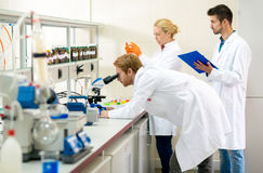 Chemists working on analysis Royalty Free Stock Image