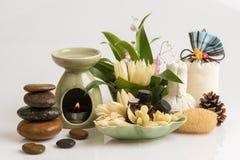 Chempaka blanc, absolu de fleur de Champee (nom thaïlandais) Photos libres de droits