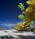 Chenang strand, Langkawi ö Royaltyfri Fotografi