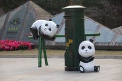 Chengdu badania baza Gigantycznej pandy hodowla, Chengdu, Sichuan, Chiny fotografia royalty free