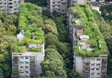 Chengdu - Buildings and vegetation Royalty Free Stock Photos