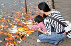 Chengdu, China: Mother and Daughter Feeding Fish Royalty Free Stock Photos