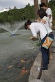 Chengdu, China: voer vissen Stock Fotografie