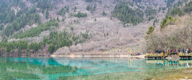 CHENGDU Kina-Febuary 6, 2014; Kinesisk och turist- folktrave Royaltyfria Bilder
