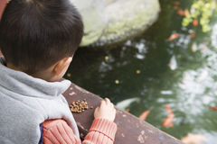 Chengdu, porcelaine : poissons d'alimentation Photo stock