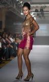 Chennai International Fashion Week 2012 Royalty Free Stock Images