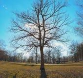 Chennualt parkerar golfbanan är en offentlig kurs för 18 hål royaltyfri bild