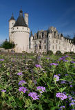 Chenonceau castle France Loire Valley flowers. Chenonceau castle in France beautiful flowers in foreground on clear blue sky Stock Images