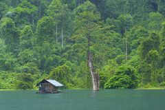 Cheo Lan lake in Khao Sok National park, Thailand. Landscape of a rainforest in Khao Sok National park. Thailand Royalty Free Stock Images