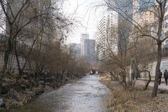 Cheonggyecheon το χειμώνα Στοκ Φωτογραφία