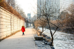 Cheonggyecheon stream in winter, Seoul, South Korea Royalty Free Stock Image