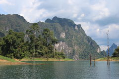cheow khao湖lan国家公园sok泰国 库存照片