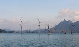 Cheow Lan Lake of Rajjaprabha-Damreservoir, Thailand Stock Foto's