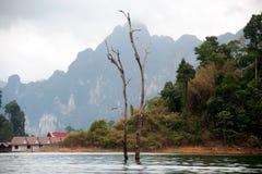 Cheow Larn湖观点和地标Ratchaprapa水坝的 免版税库存照片