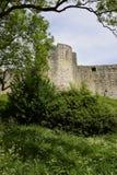 Chepstow城堡 免版税库存照片