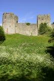 Chepstow城堡 图库摄影