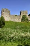 Chepstow Castle Στοκ Εικόνα