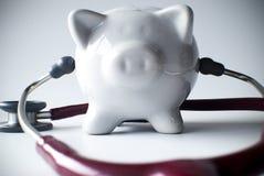 Chequeo de las finanzas Imágenes de archivo libres de regalías