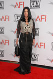 Cher,. Cher  at the The AFI Life Achievement Award Honoring Mike Nichols presented by TV Land, Sony Pictures Studios, Culver City, CA. 06-10-10 Royalty Free Stock Images