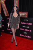 Cher Royalty-vrije Stock Foto
