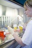 Chercheur féminin dans un laboratoire Photographie stock