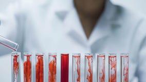 Chercheur médical ajoutant le matériel sec d'essai dans les tubes avec le liquide, plan rapproché images stock