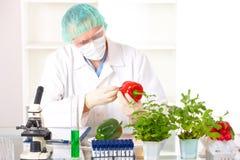 Chercheur supportant un légume d'OGM Image libre de droits