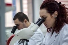 Chercheurs féminins et masculins ou femmes et m médicaux ou scientifiques Image libre de droits