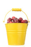 Cheries in colorful yellow metal bucket Stock Photo