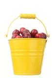 Cheries dans la position colorée en métal jaune photo stock