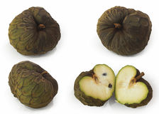 Cherimoya -Annona cherimola- or chirimoya, is an edible fruit-bearing species of the genus Annona Royalty Free Stock Images