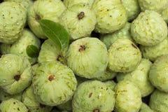 Cherimoya cherimola Annona φρούτων Στοκ Φωτογραφία