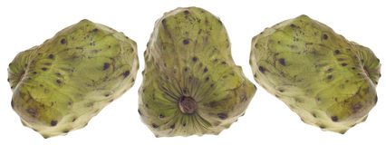 Cherimoya Custard Apple Fruit Royalty Free Stock Images