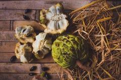 Cherimoya för sockeräpple (den fjälliga annonaen) Royaltyfri Foto