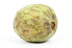 Cherimoya fruit Royalty Free Stock Images