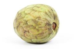 Cherimoya fruit. Isolated on white background Royalty Free Stock Images