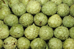 Cherimoyas Royalty Free Stock Photo
