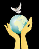 Cherish the peace. Hands holding globe and a flying pigeon on a black background Royalty Free Stock Photo