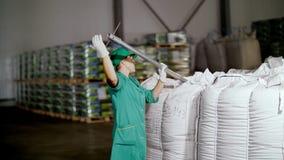 Cherkasy, Ucrania - 24 de agosto de 2018: la mujer, empleado de la empresa agrícola, recoge muestras de grano del maíz de grande almacen de metraje de vídeo