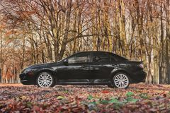 Chernigov, Ukraine - November 10, 2018: Mazda 6 MPS in the autum royalty free stock photo