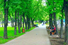 City park with promenade path benches and green trees. People have a rest in city park Stock Photos