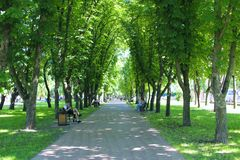 People rest in city park sitting on benches. Footpath with big trees and benches. Relax place. Chernihiv / Ukraine. 28 May 2018: People rest in city park sitting royalty free stock photo