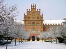 chernivtsi乌克兰大学 免版税库存图片