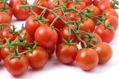 Cherri-Tomaten Lizenzfreie Stockfotografie