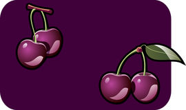 Cherrie. Color illustration of a cherries. Part of my vector fruit Collection. The vector file is in AI-EPS8 format Royalty Free Stock Photos