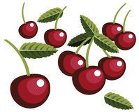 Cherries. Illustration of simplistic cherries with leaves Royalty Free Stock Photo
