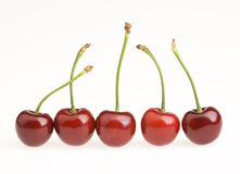 Cherries. A few cherries  in the White background Stock Images