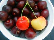 Cherries. Bowl of cherries stock photography