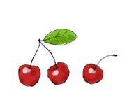 Cherries. Three juicy cherries on white background Stock Photo